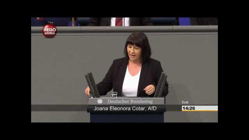 Fulminante Rede von Joana Cotar AfD Netzwerkdurchsetzungsgesetz ist eine Schande für Deutschland