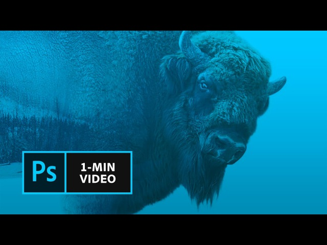 How to Make a Double Exposure Effect in Photoshop | Adobe Creative Cloud