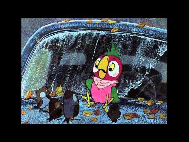Попугай Кеша - Возвращение блудного попугая. 1 серия