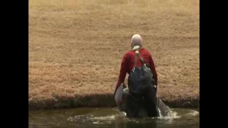 Несносный дед на рыбалке