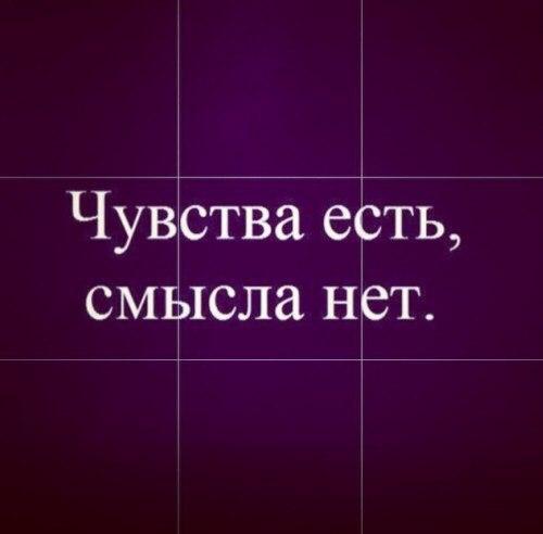 Чувства есть смысла нет картинки