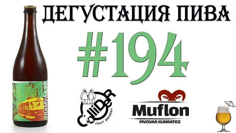 Дегустация пива 194 имперский стаут Tramvaj 22 от Collider brewery и Kunratice Muflon 18