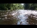 вода! да! (река Волчья, 29.07.18)