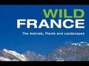 Дикая Франция 1 серия Скрытая жизнь Бокажа