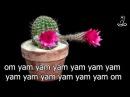Musicoterapia e Meditazione Guidata : Bija Mantra e Bija Akshar