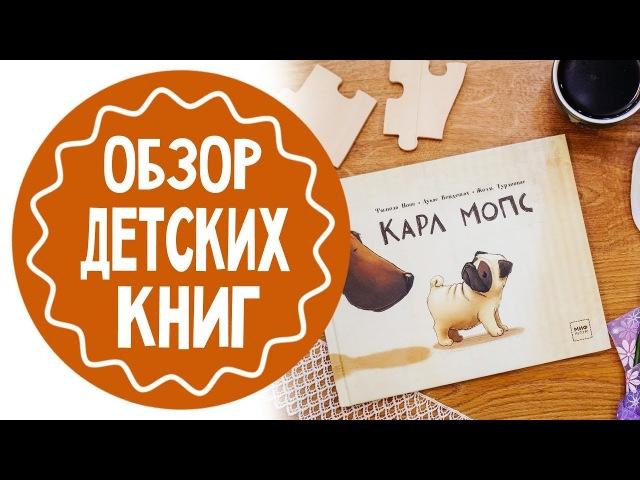 100 окошек открывай-ка   Карл Мопс   Обзор детских книг