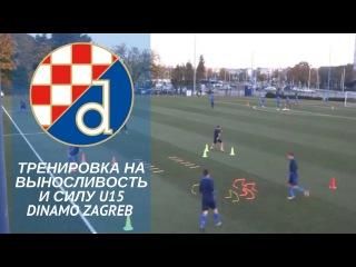 Тренировка на выносливость и силу   Dinamo Zagreb U15