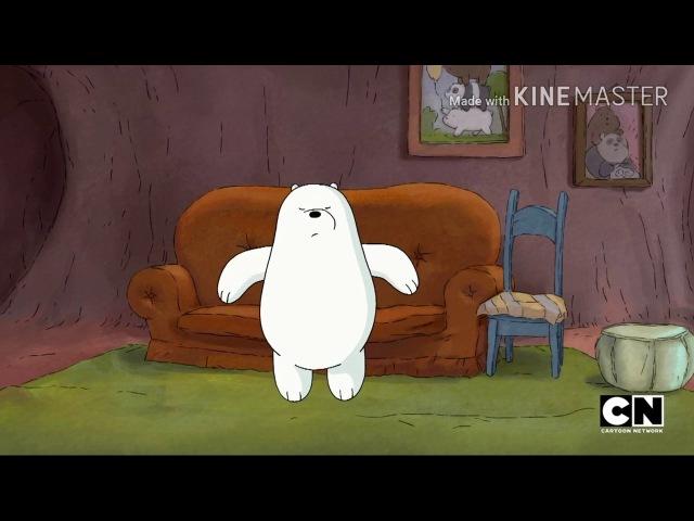 Мы обычные медведи Белый в движении