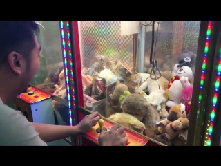 Cat stuck in a claw machine -- viralhog