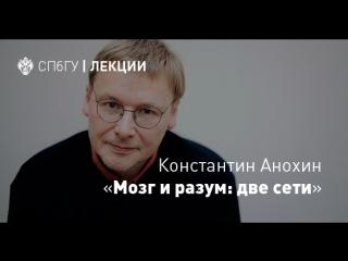 Константин Анохин Мозг и разум  две сети