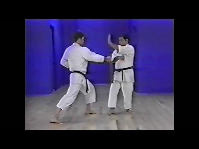 Goju ryu kata Saifa Bunkai