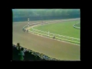 Secretariat Belmont Stakes 1973