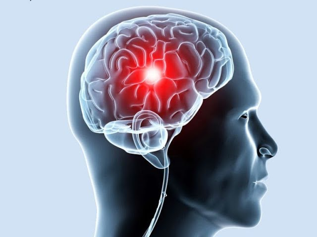 мозг гипоталамус влияние аффирмаций воздействие на психику