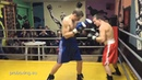 24.01.2016 Fight 1 Real Boxing Show