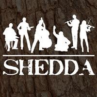 Логотип SHEDDA/ Шедда /Folk-fusion из Великого Новгорода