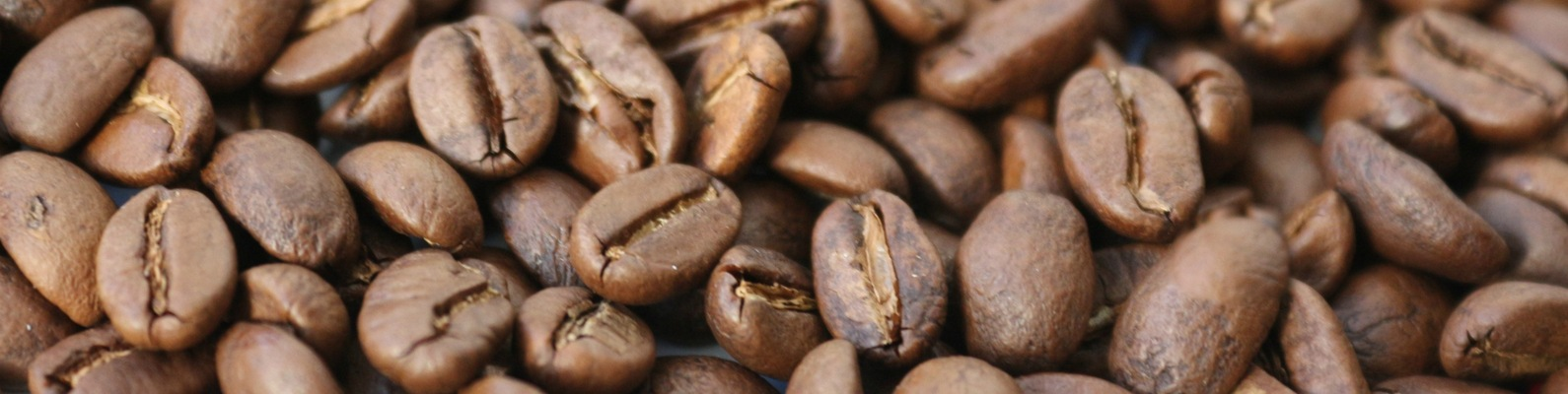 Arabica robusta coffee price