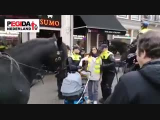 Holland, the police arrests a lady with a child on the stroller because she r