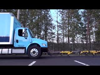 Boston dynamics and truck