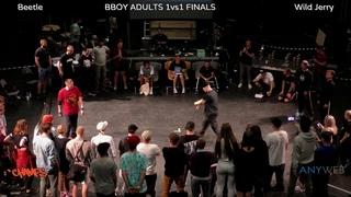 Champs - Beetle vs Wild Jerry  B-boy 1v1 final