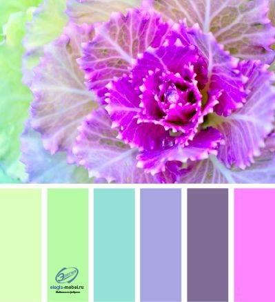 Сочетание цветов, изображение №6