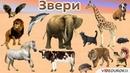 Урок окружающего мира Какие бывают животные