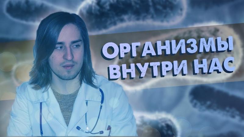 Организмы внутри нас: вирусы и паразиты [Лекция Владимира Алипова]
