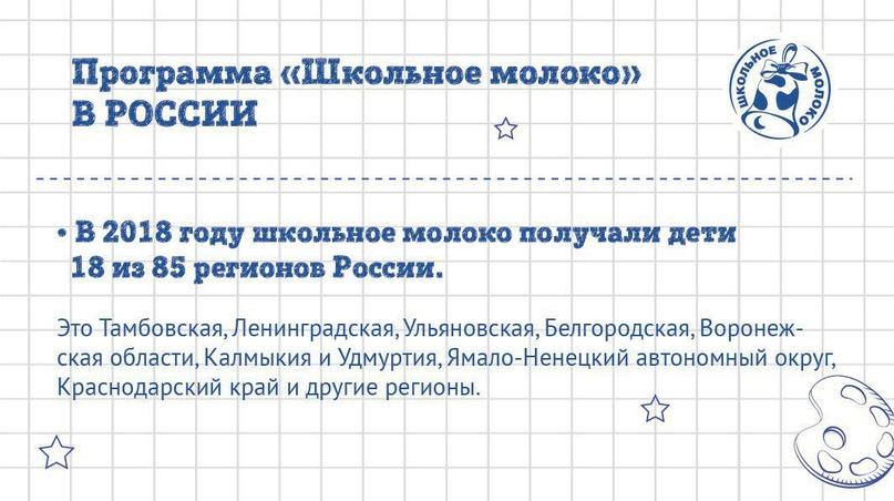 «Школьное молоко» в России: вклад в будущее, изображение №4