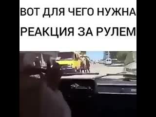 Вот для чего нужна реакция за рулем