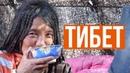 Тибет который скоро исчезнет последние кочевники и традиции