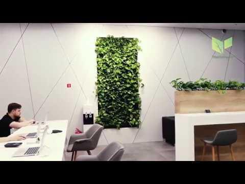 Вертикальное озеленение iPort Фитостена для Apple