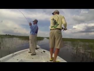Забавные моменты на рыбалке!