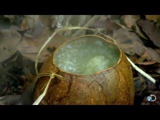 КИПЯЧЕНИЕ ВОДЫ КАМНЯМИ. DIY Survival Brewing Tea in the Jungle  Dual Survival