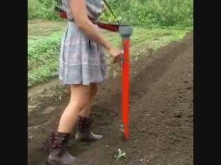 Отличное приспособление для высадки рассады -