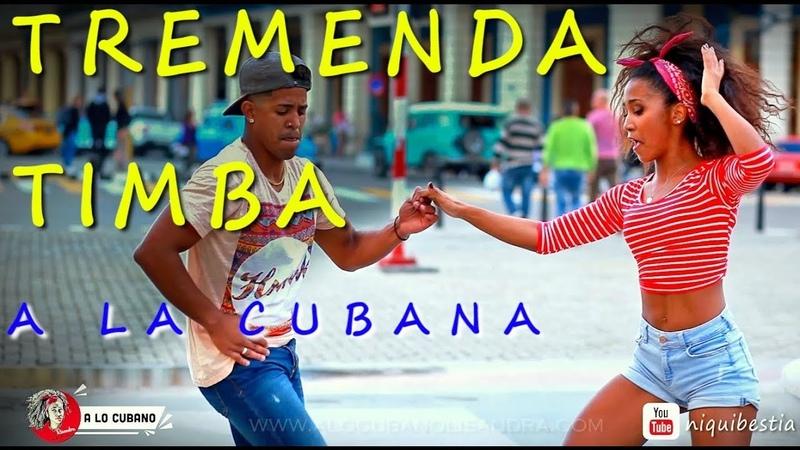 EXCELENT TIMBA CUBANA en La Habana rumba salsa cubana