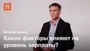 Человеческий капитал Василий Аникин ПостНаука