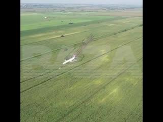 Самолет экстренно сел посреди кукурузного поля