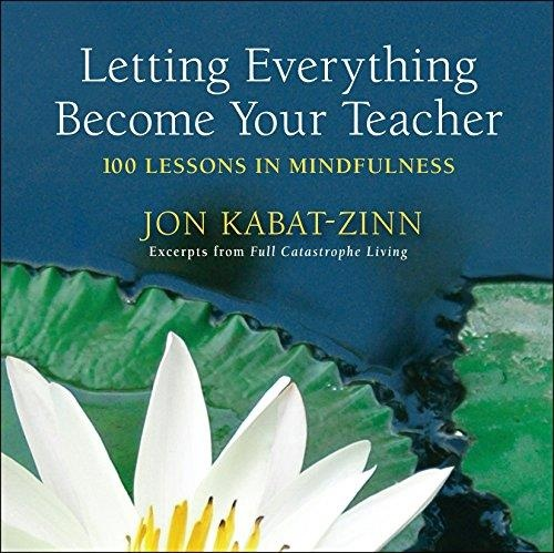 Letting everything become your teacher 100 lessons in mindfulness