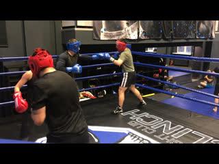 Василий песков - тренировки по классическому боксу
