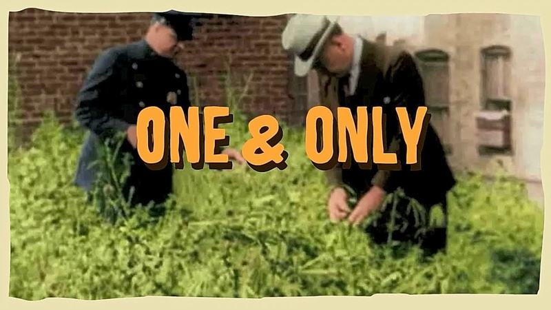 LENTOURLOOP Ft. Charlie P - One Only (Official Video)