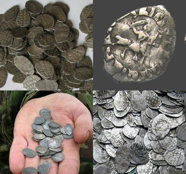 разновидность чешуек монет фото футболки
