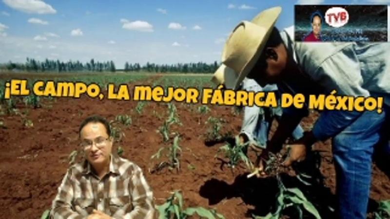 Opiniónenserio ¡EN VIVO!: ¡El campo, la mejor fábrica de México!