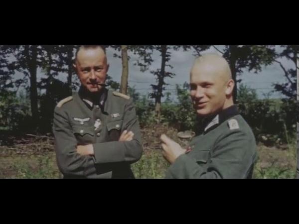 17 армия и Дивизия СС Викинг в районе городов Жовква и Збараж. Цветная хроника июнь-июль 1941 г.