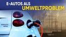 E Autos als Umweltproblem 17 Juni 2019 14443