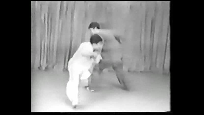 Лян Шоуюй Синъицюань