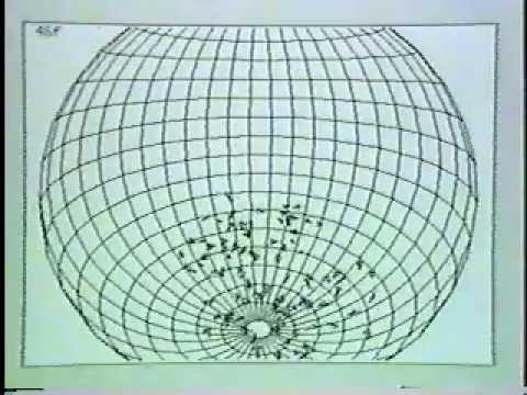 Craig Reynolds Original 1986 Boids simulation