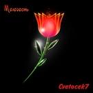 Обложка Прятки (Remix Alexei Shkurko) - Cvetocek7