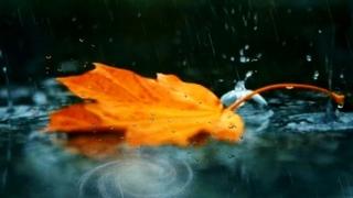 АСМР капельки дождя падают с крыши ASMR raindrops fall from the roof