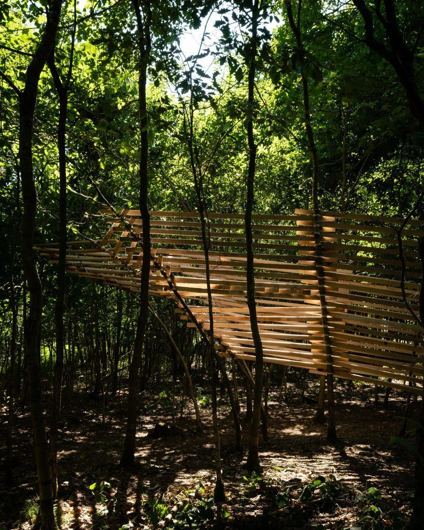 Students build giant speaker and human-scale bird's nest in Studio in the Woods workshops