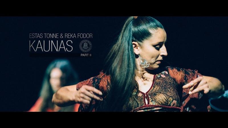 Estas Tonne Reka Fodor @ VDU Kaunas 2014 HD Part II