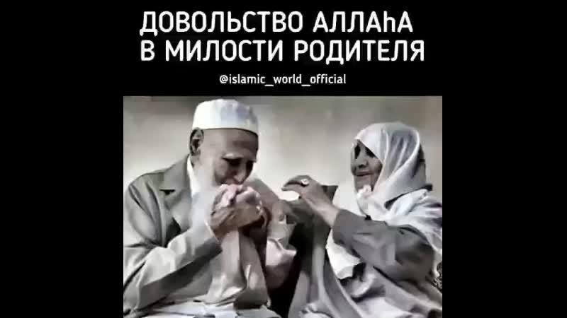 @_tauhid.islam_ _dove_ Посланник Аллаха (мир ему и благословение Аллаха) сказал_ «У ( 480 X 480 ).mp4